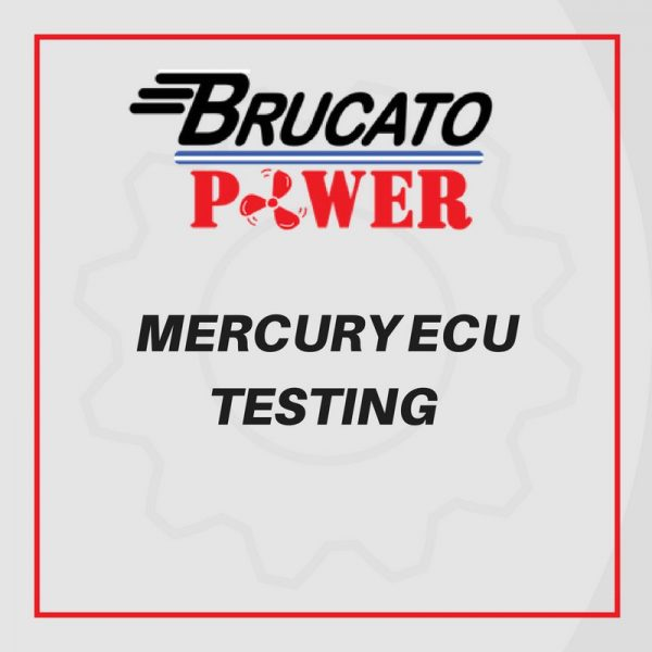 Mercury ECU Test and minor repairs